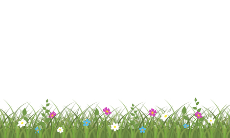 Grass and flowers border. Summer or spring green grassy lawn. Vector illustration on white background.