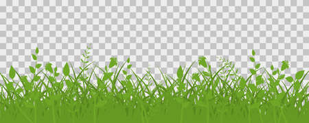 Green grass meadow border. Spring plant field lawn. Grass background. Illustration