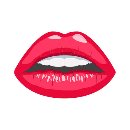 Women's lips. Red, sexy woman lips. Isolated vector illustration on white background.