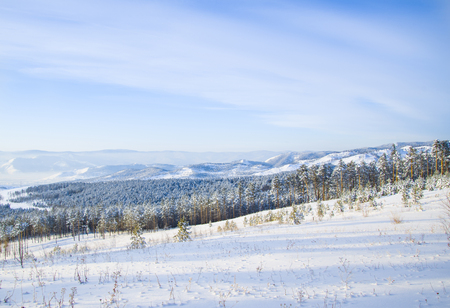 Beautiful nature Siberia in winter. Trees, mountains, fields covered with white snow. Stock Photo