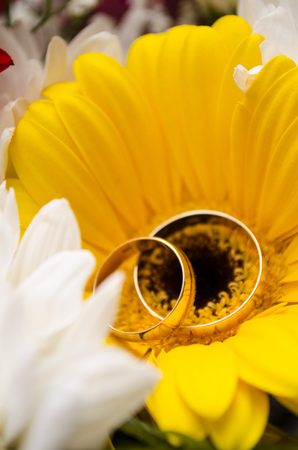 Wedding rings lie on a yellow flower during the wedding ceremony.