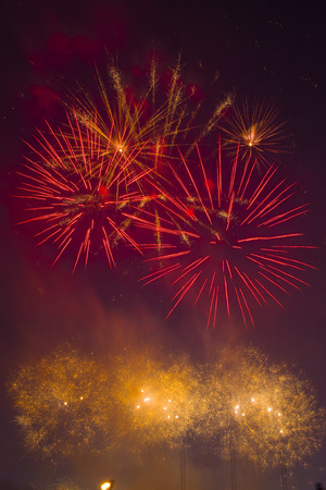 graduation countdown: Colorful wedding fireworks in the sky. Beautiful lights in the sky.