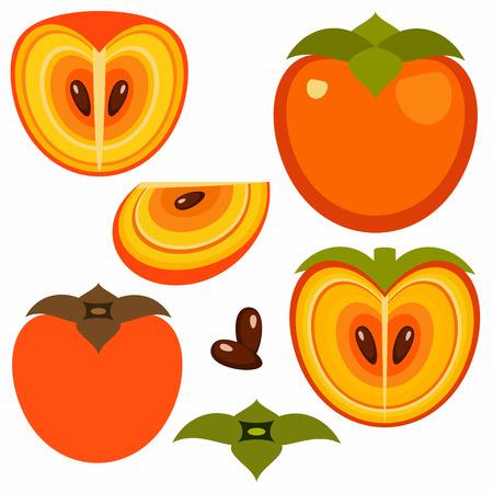 vegetarianism: Persimmon Illustration