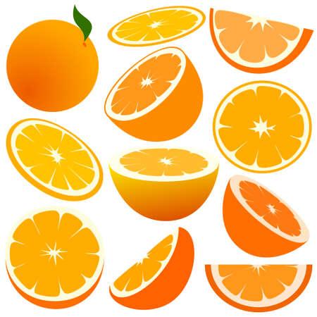 with sets of elements: Oranges Illustration