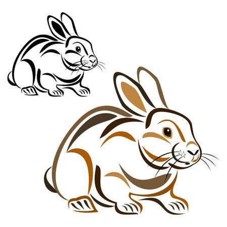 hare: Rabbit