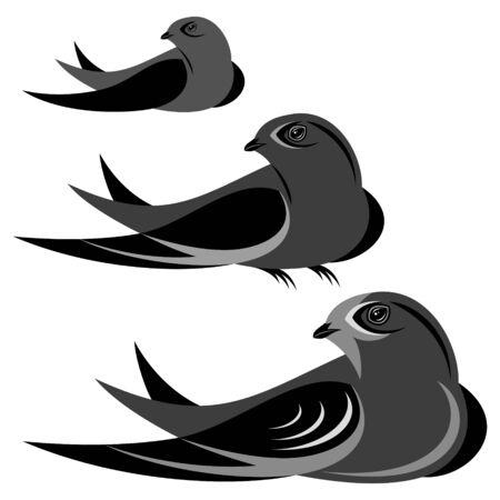 martinet: Illustration Swift Illustration