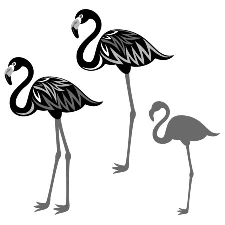 with sets of elements: Flamingos illustration