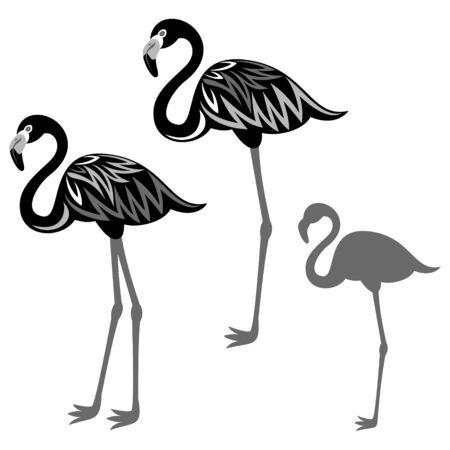 flamingos: Flamingos illustration