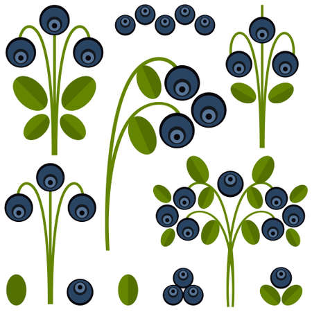 vegetarianism: Blueberry,