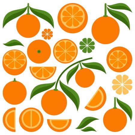 bitter orange: Citrus
