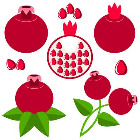 garnet: Garnet Illustration