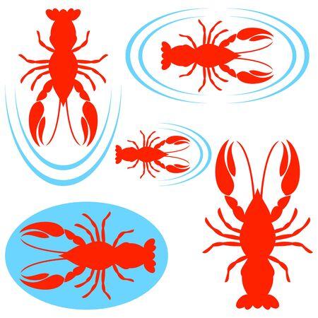 crayfish: Crayfish Illustration
