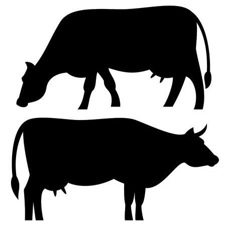 with sets of elements: Cow