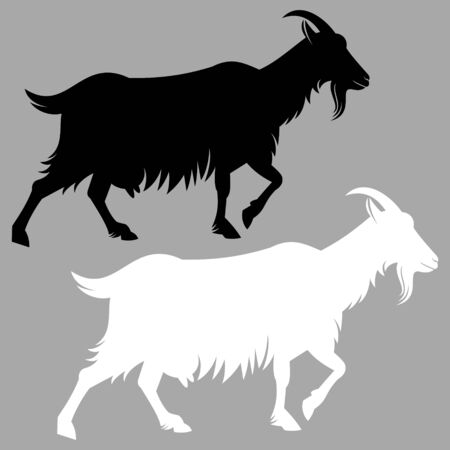 goat: Goat