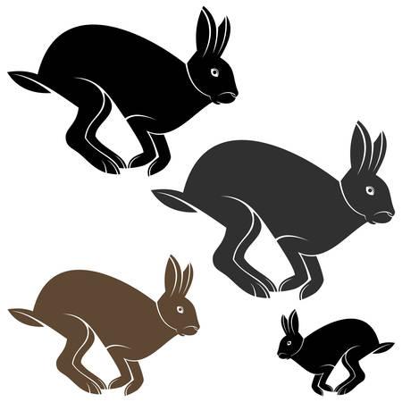 hare: hare Illustration