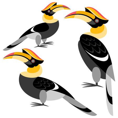 hornbill: hornbill Illustration