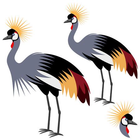 crowned: crane Illustration