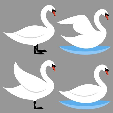 with sets of elements: swans