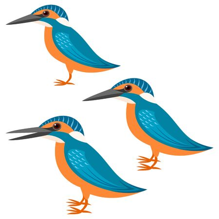 with sets of elements: kingfisher