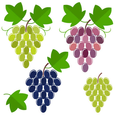 with sets of elements: grape