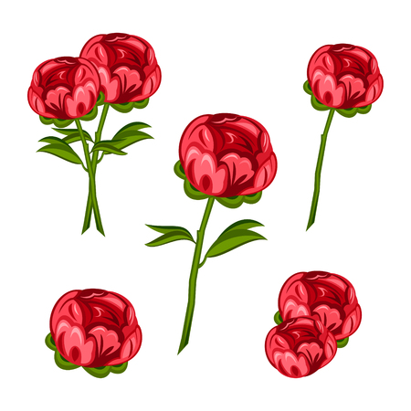 Red peony pattern with white color in the back.