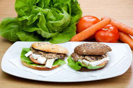 Grill Sandwich with fresh vegetables in the background