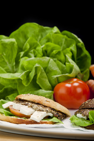 Grill Sandwich with fresh vegetables in the background Banco de Imagens - 42466661