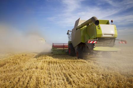 Combine harvester Banco de Imagens - 42466837