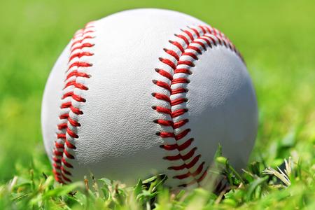 Baseball ball in the grass