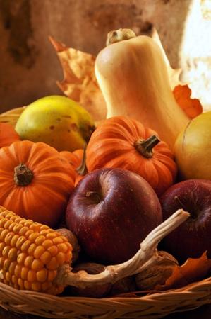 Früchte der Saison Standard-Bild - 9146230