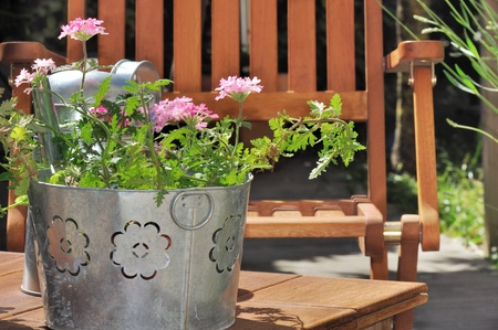 Verbena in a metal pot on a wood terrace Stock Photo