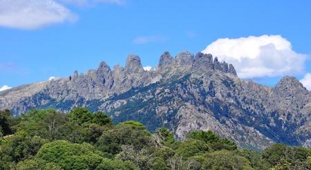 Berge im Hintergrund durch die Vegetation hervorgehoben Standard-Bild - 10334004