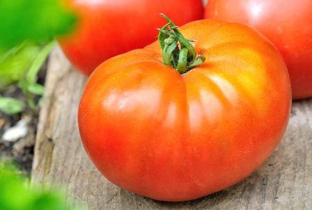 고기의: A nice meaty tomato put on a wooden plank