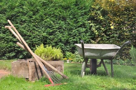 old wheelbarrow and gardening tools