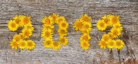 2012 bloemen op een oude houten plank