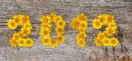 2012 floral on an old wooden board
