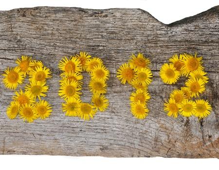 2012 Blumen auf einem alten hölzernen Standard-Bild - 11052281
