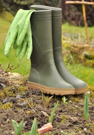 rubber boots and gloves in a garden in spring Stock Photo