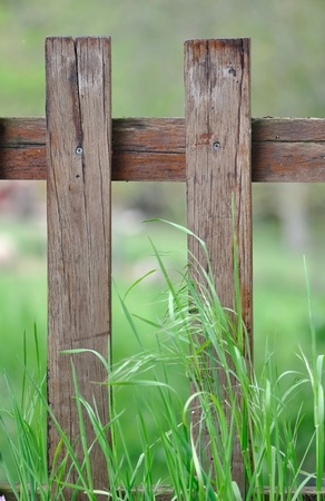 delineate: wooden fence in the tall grass