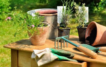 tuingereedschap aangebracht op een houten tafel in de tuin