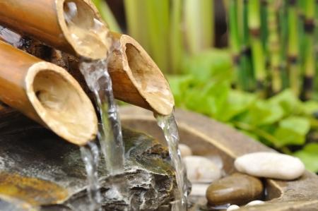 수생 식물과 대나무 분수에서 물 스톡 콘텐츠