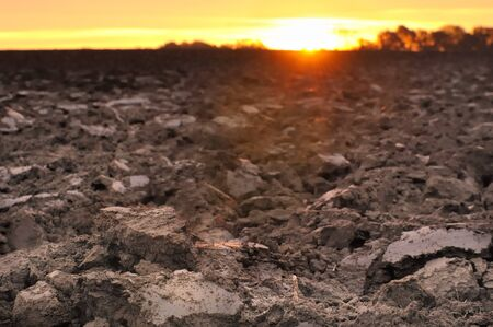 field of freshly turned topsoil forming clods of earth at twilight