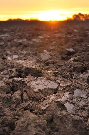 Feld von frisch wandte Oberboden bilden Erdklumpen in der Dämmerung Standard-Bild - 16481920