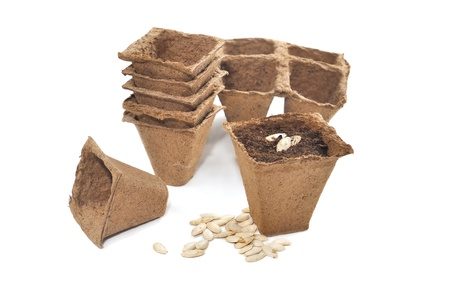 biodegradable: biodegradable peat pots with seeds for planting isolated on white background