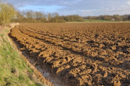 plowed: wide field of plowed land