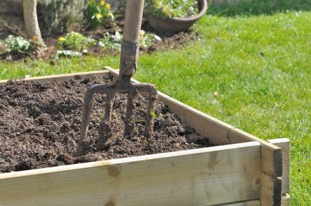 Spaten in einem hölzernen Pflanzer für Gemüsegarten Standard-Bild - 18706176