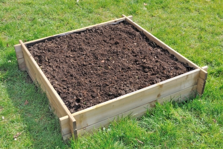 Boden in einem quadratischen Holztablett für Mini-Gemüsegarten Standard-Bild - 18706181