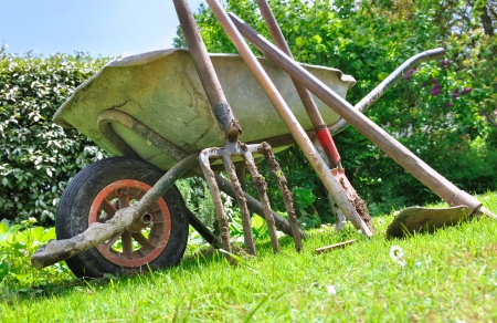 Old Gardening Tools And Wheelbarrow In The Garden Stock Photo   19902959