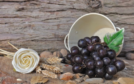 overturned: grapes in a overturned bucket  in a rural setting  Stock Photo