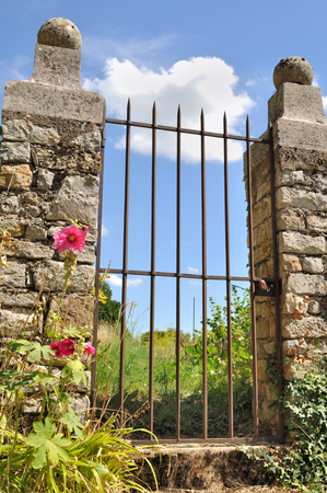 old iron gate overlooking a country garden photo